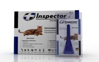 Разбираем капли – защитники от кошачьих паразитов Инспектор и Стронгхолд
