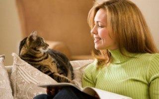 Выведем кошек «на чистую воду»: ответы на волнующие вопросы о пушистиках