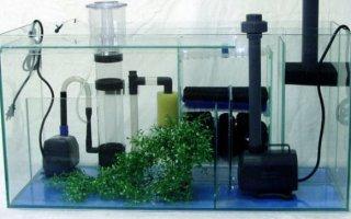 Аквариумное оборудование: необходимый набор для новичка
