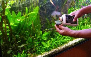 Чем удобрять растения в аквариуме?