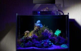 Инструкции изготовления различных аквариумных подсветок