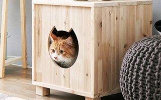 А вы знали, что домик для кошек можно сделать самостоятельно?