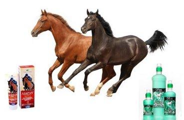 Препараты при лечение болезни суставов у лошадей анкелоз височно челюсного сустава