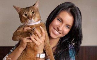 Знакомимся с кошечкой редкой породы Чаузи