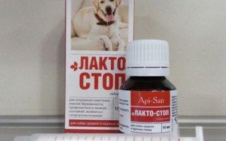 """Препарат """"Лакто-Стоп"""" для собак"""