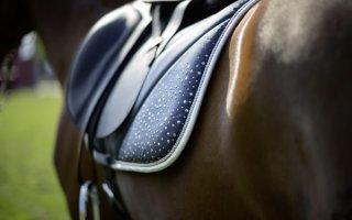 Неотъемлемый элемент защитной экипировки лошади – вальтрап