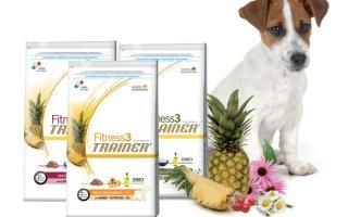 Вся польза корма для собак Trainer