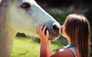 Узнаем лошадь по звукам!