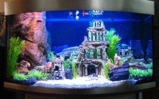 Создайте подводное царство при помощи декораций