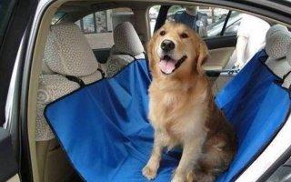 Автогамак для собак: как выбрать или пошить своими руками?