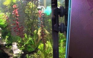 Водонагреватель – важная часть любого аквариума