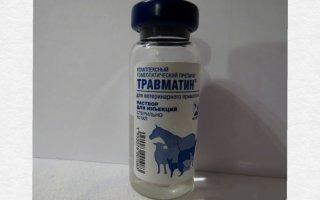 Травматин – гомеопатическая помощь для собаки