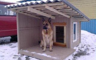 Готовим собачий домик к холодам