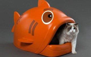 Какие бывают закрытые туалеты для кошек?