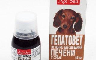Когда используют Гепатовет для собак?