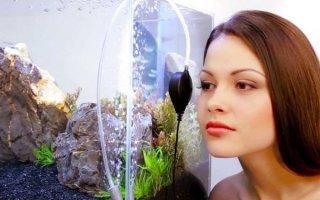 Учимся изготавливать и устанавливать аквариумный насос