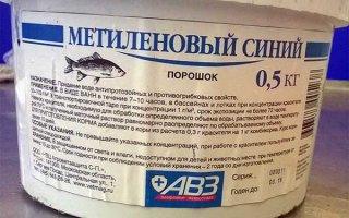Метиленовая синь – санитарный кондиционер для аквариумной воды