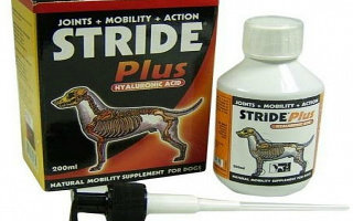 Если проблемы с суставами у собаки – препарат Страйд Плюс