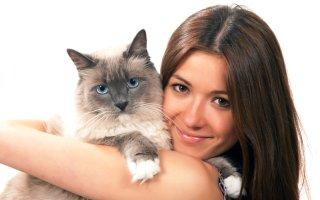 Помогаем любимому котику избавиться от стресса и отравления