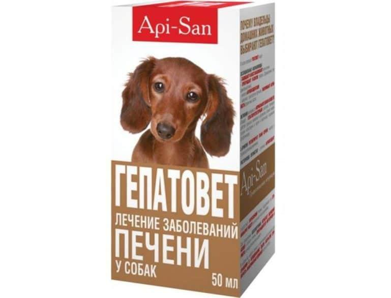 Гепатопротекторный препарат для собак