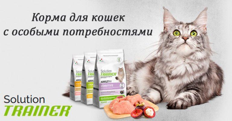 корма для кошек трейнер