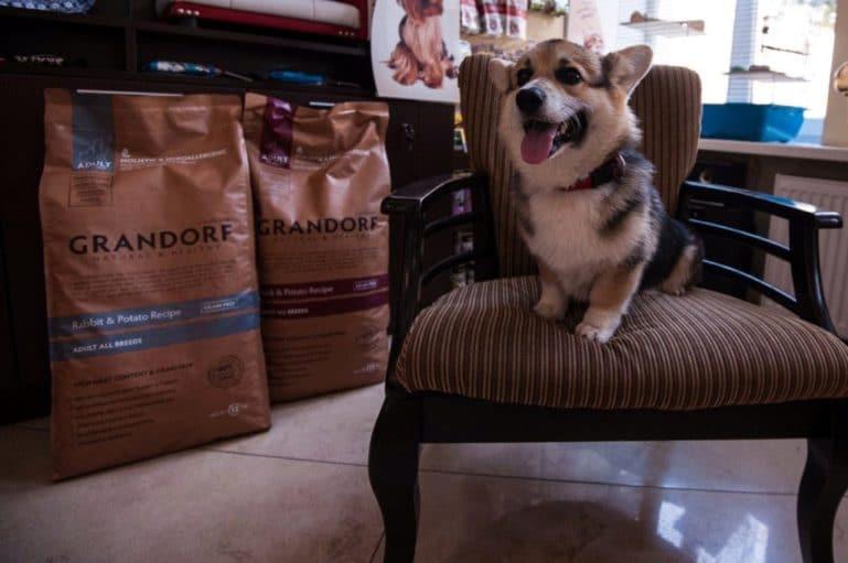Корм для собак грандорф внешний вид