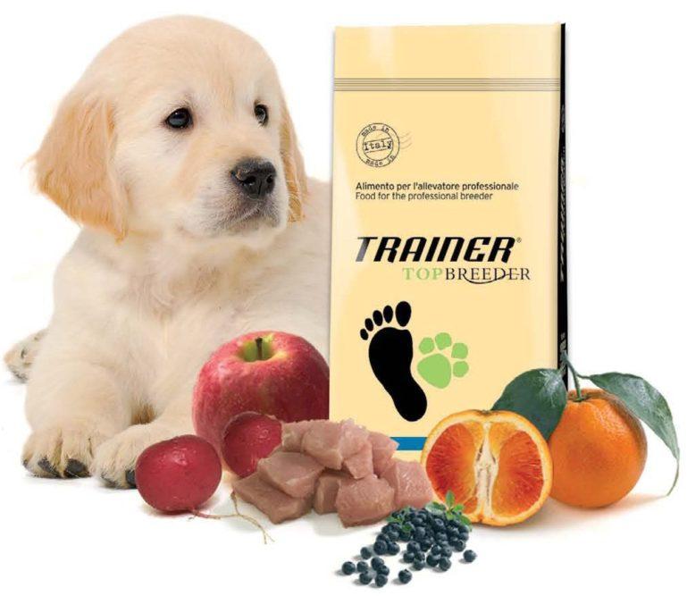 Щенок с кормом Трейнер