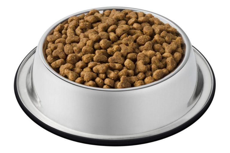 Перевести кошек с сухого корма можно за несколько недель